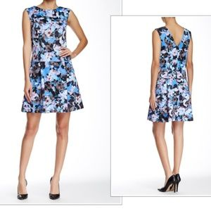 Cynthia Steffe A-Line Dress, Floral,